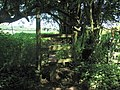 Stile on the Gloucestershire Way near Netherhope - geograph.org.uk - 522861.jpg