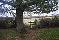 Stile on the footpath south of the Spa Valley line - geograph.org.uk - 1588593.jpg