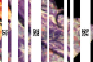 Fabrice de Nola - Still (Mirror Edit), closer view on QR codes.