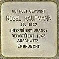 Stolperstein für Rosel Kaufmann (Differdingen).jpg