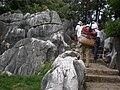 Stone Forest pathway 04.JPG