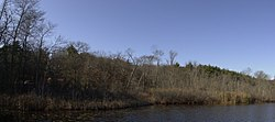 Stony Brook Reservation Parkways Boston MA.jpg