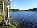 Stora Delsjon Vastergotland Sweden StoraTorpsTange direction S 8July2020.jpg