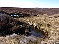 Stream pool in infant Afon Tanat - geograph.org.uk - 1757474.jpg