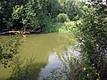 Svislač river in southeastern Minsk - 06.jpg