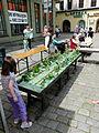 Swidnica june 2014 010.JPG