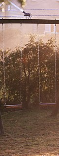 Swings at sun up (442236394).jpg