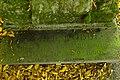 T.T Grafmonument Familie Dobbe Den Bosch 522409 (1).JPG