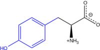 TYROSINE1.png