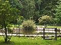 Teich - panoramio (24).jpg
