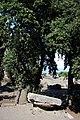 Templo dórico Pompeya 04.jpg