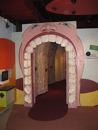 Thackray Medical Museum - Image: Thackray Open Wide