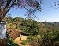 Thailand Berglandschaft - panoramio.jpg