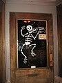 That Way Skeleton.jpg