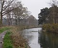 The Basingstoke Canal - geograph.org.uk - 769465.jpg