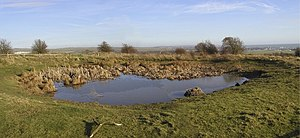 English: The Dewpond on Lancing Ring The resto...