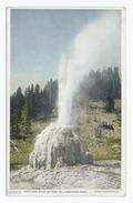The Lone Star Geyser, Yellowstone Ntl. Park, Wyo (NYPL b12647398-69740).tiff
