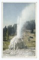 The Lone Star Geyser, Yellowstone Ntl. Park, Wyo (NYPL b12647398-69740).tiff