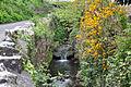 The Ogney Brook on Church Lane, Llantwit Major - geograph.org.uk - 1278011.jpg