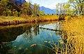 The Pond (66035221).jpeg