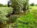 The River Isle at Hambridge - geograph.org.uk - 1380605.jpg
