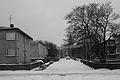 The Street (2195336529).jpg