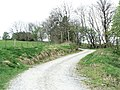 The road to Achianich - geograph.org.uk - 428808.jpg
