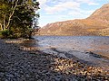 The shore on Loch Maree - geograph.org.uk - 1220343.jpg