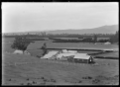 The woolshed and men's cottage on the Mendip Hills property, Hurunui District. ATLIB 283989.png