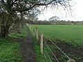 Throop, Berry Hill path - geograph.org.uk - 734960.jpg