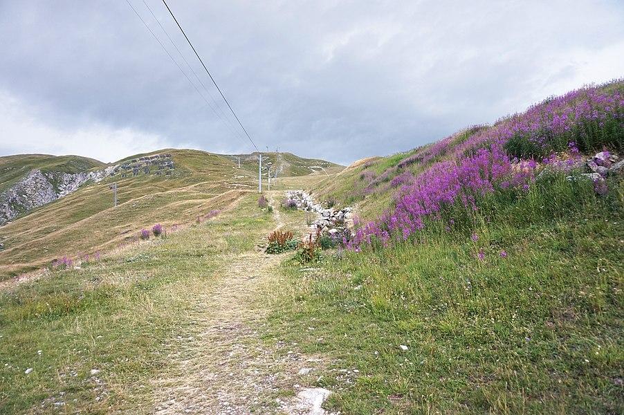 Trail in Tignes.