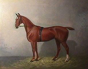 Title Unknown (Painting of a Horse)