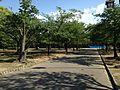 Tokushima Central Park 20160504-3.JPG