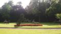 Topiaire Jardin Dumaine.png