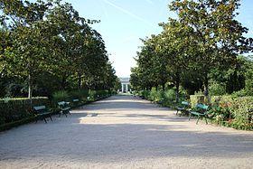 lalle principale avec ses magnolia grandiflora au jardin botanique de tours - Jardin Botanique De Tours