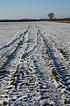 Tracks in the snow - geograph.org.uk - 1634445.jpg