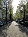 Tree-lined Street (5719332636).jpg