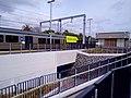 Trentham railway station 2021.jpg