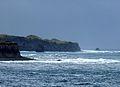 Tristan West coast 03 (3450376868).jpg