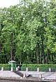 Tsentralny District, St Petersburg, Russia - panoramio (131).jpg