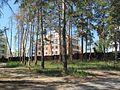 Tsentralnyy rayon, Tolyatti, Samarskaya oblast', Russia - panoramio (62).jpg
