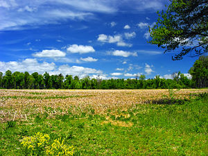 Tunkhannock Township, Monroe County, Pennsylvania - Fields and woods in the township