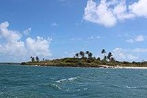 Turtle Head Island--Turtle-head-island