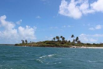Turtle Head Island - Turtle Head Island, Cape York