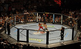Image illustrative de l'article UFC 2010 Undisputed