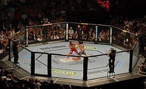 Shot of The Octagon from UFC 74 ; Clay Guida v...