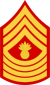 three chevrons up and four down with bursting bomb