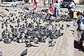 Ulaanbaatar 149 (26248433676).jpg