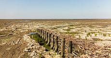 Uniek door eb en vloed steeds wisselend kweldergebied. Locatie, Noarderleech Provincie Friesland 13.jpg