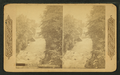 Up the river from bridge, Cuyahoga O, by Continent Stereoscopic Company.png